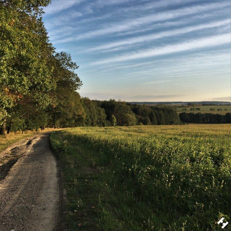 Schöner Weg am Waldrand zwischen Dänkritz und Hartmannsdorf