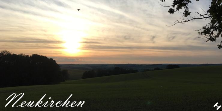 Grüne Felder im Hügelland zwischen Dänkritz und Hartmannsdorf