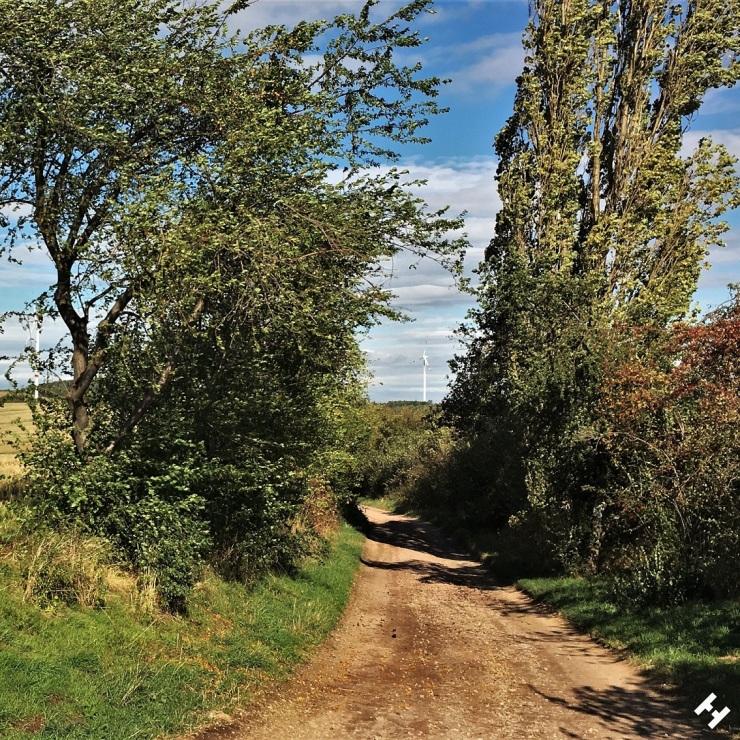 Feldweg zur Obstmeile am Feldschlösschen