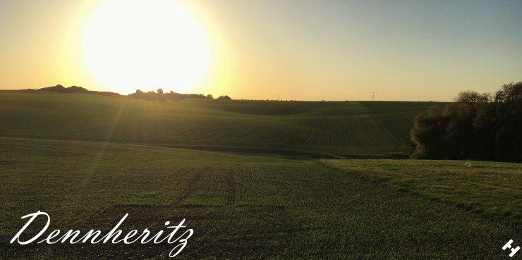 Herrliche Sonnenuntergangsstimmung über einem Feld in Dennheritz